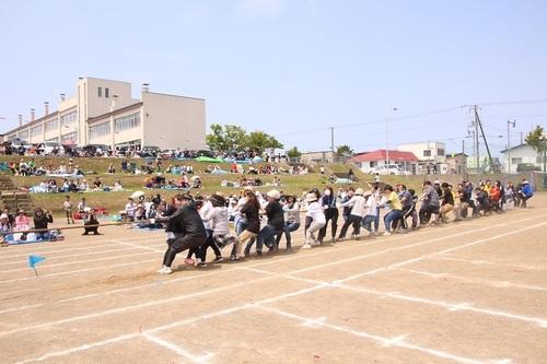 運動会 綱引き.jpg